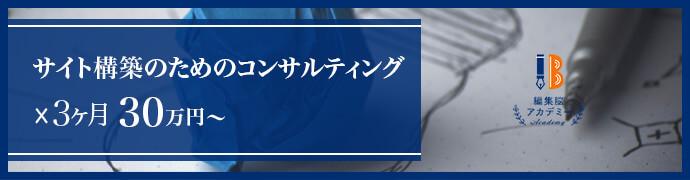 サイト構築のためのコンサルティング 3カ月30万円~